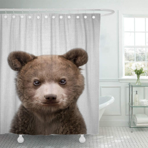 Baby20Bear20Colorful 667198