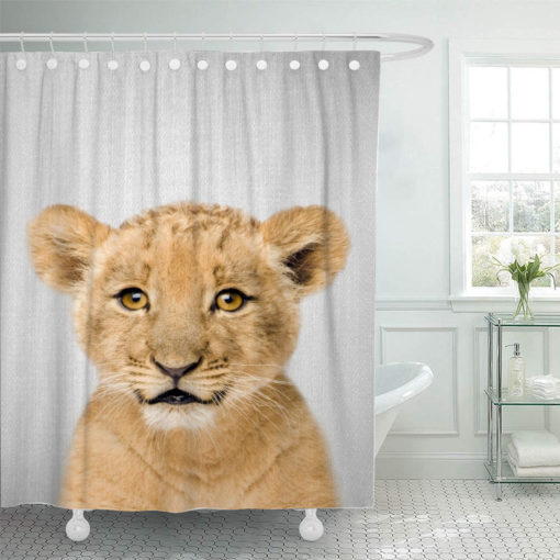 Baby20Lion20Colorful 667143