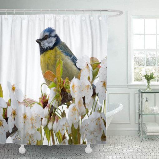 Bird 4472218